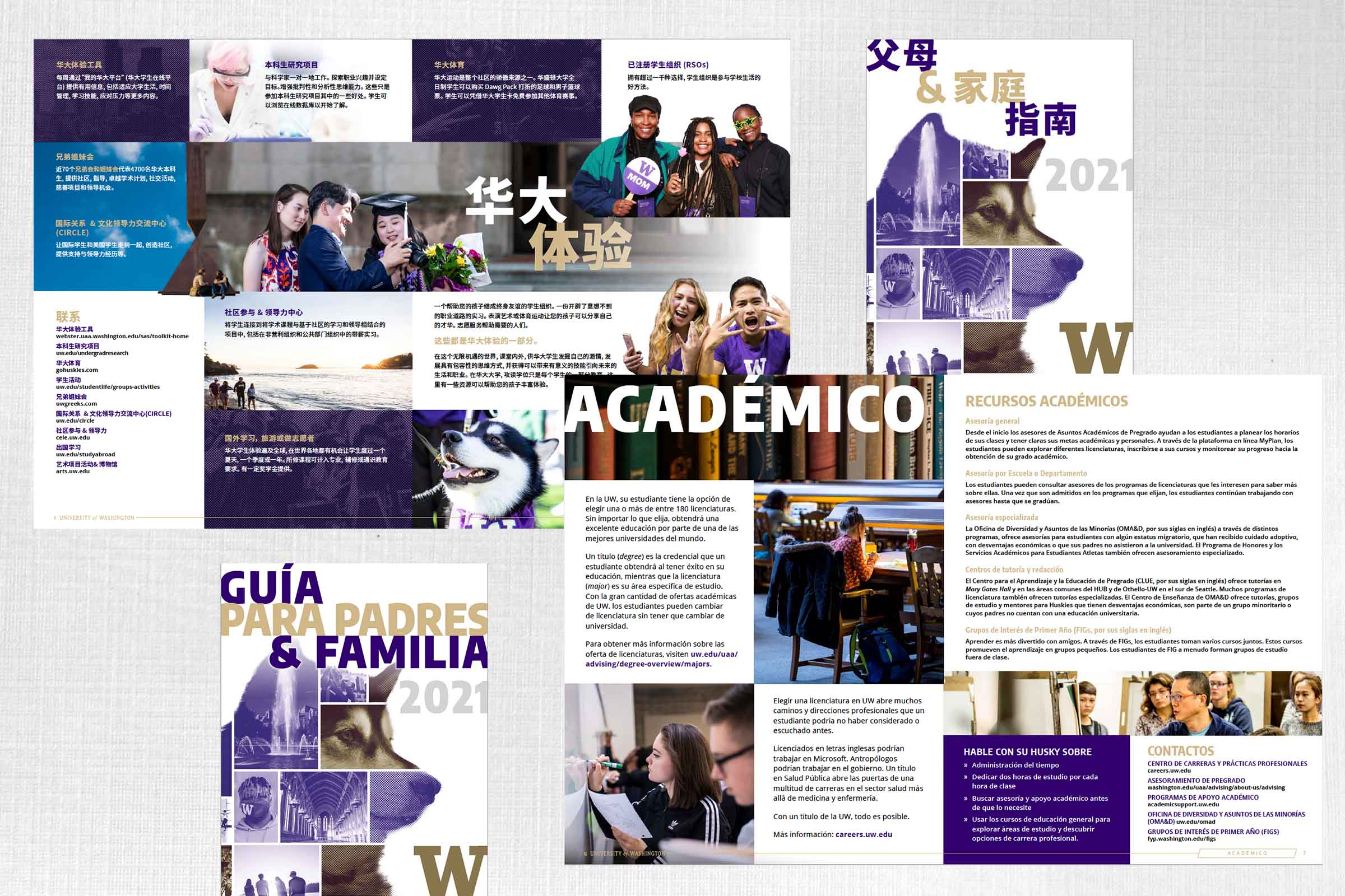 Layout for Translated Content – UW
